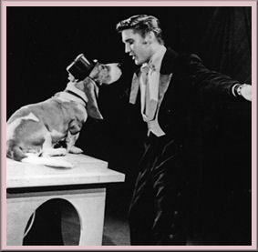 Elvis and his hound dog